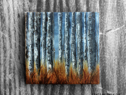 'Birchwood For The Trees' – Day 91/365 – R1900