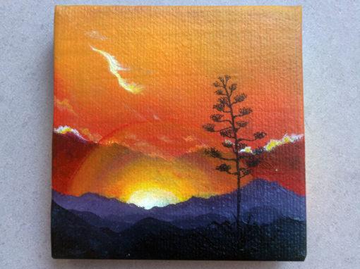 'Elated & Illuminated' – Day 120/365 – R1900