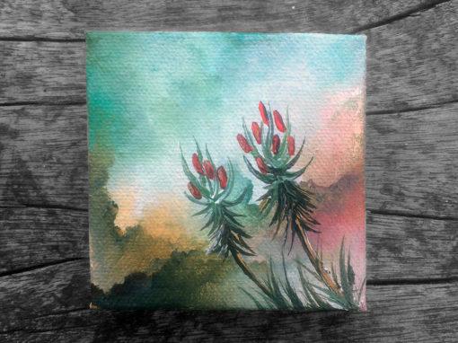 'Aloe Arrow' – Day 191/365 – Triptych R2950