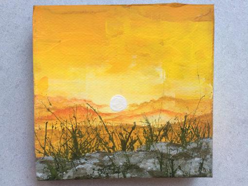 'Egg on the Sun' – Day 206/365 – R1900