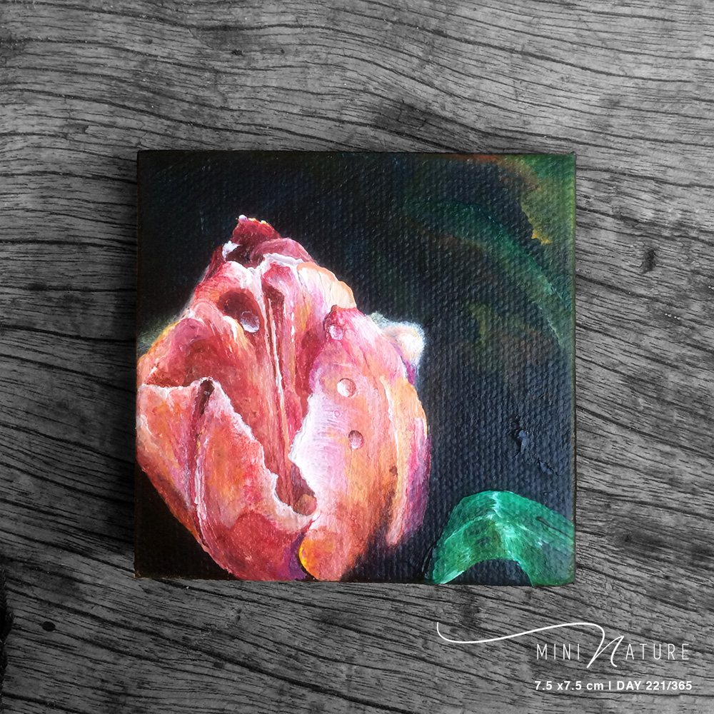 'Sub Rosa' – Day 221/365