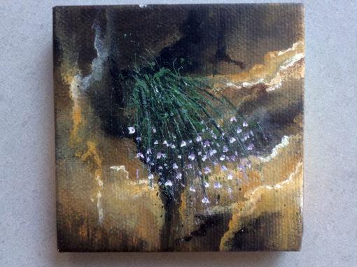'Flower Power' – Day 258/365 – R1900