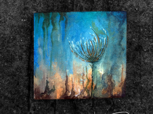 'Sad Sea Thistle' – 245/365 – R1900