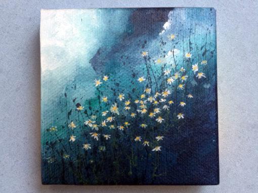 'Calmomile' – Day 246/365 – R1900