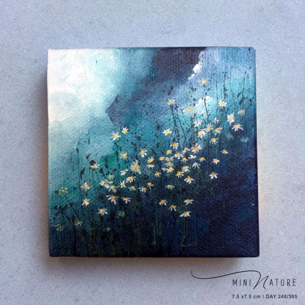 'Calmomile' – Day 246/365