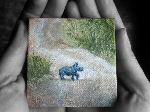 Small Mighty Rhino' – Day 275/365 – R1900