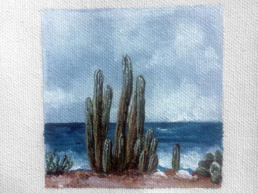 'I Sea Cactus' – Day 281/365 – R1900