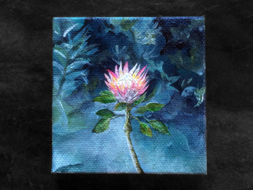 'King Protea' – Day 307/365 – R1900