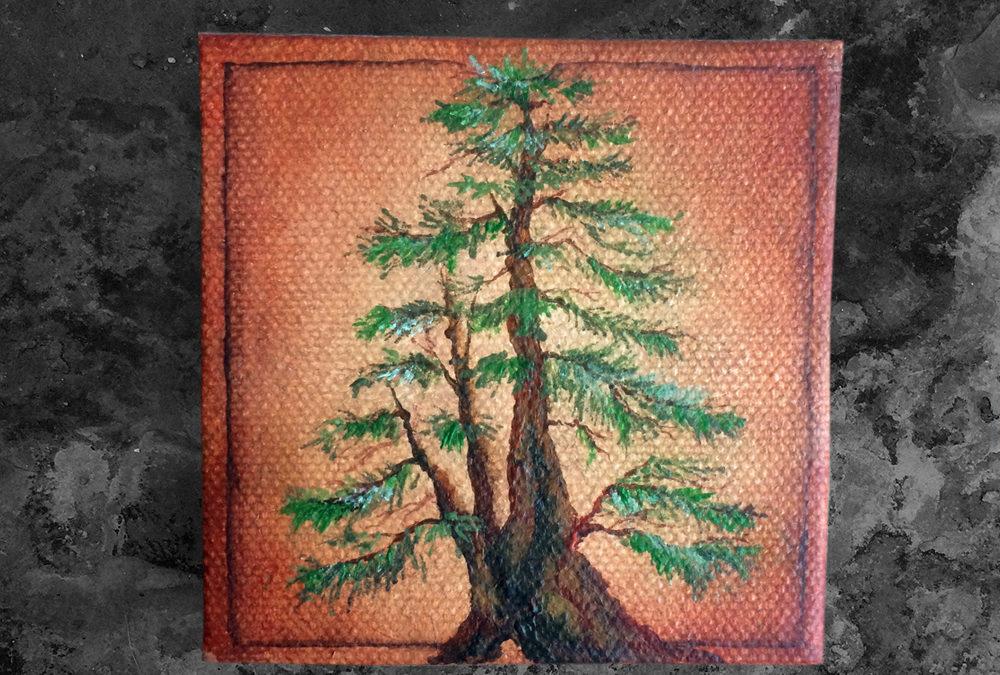 'Redwood' – Day 317/365 – Quad R2300