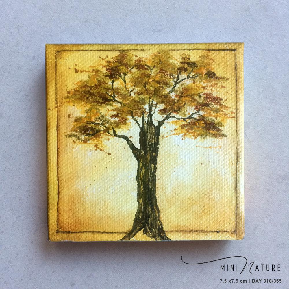 'Yellowwood' – Day 318/365 – Quad R2300
