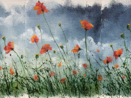 'Wild Poppies 2of 3' – Day 320/365 – SOLD