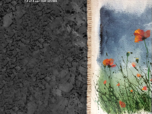'Wild Poppies 3 of 3' – Day 321/365 -NFS