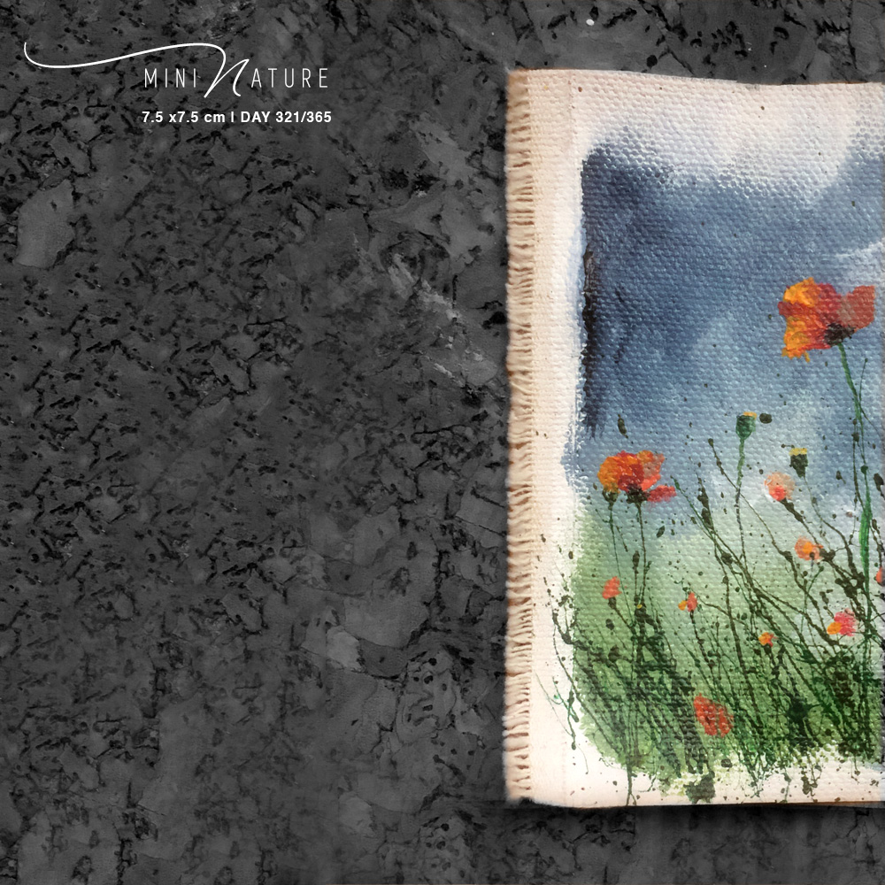 'Wild Poppies 3 of 3' – Day 321/365