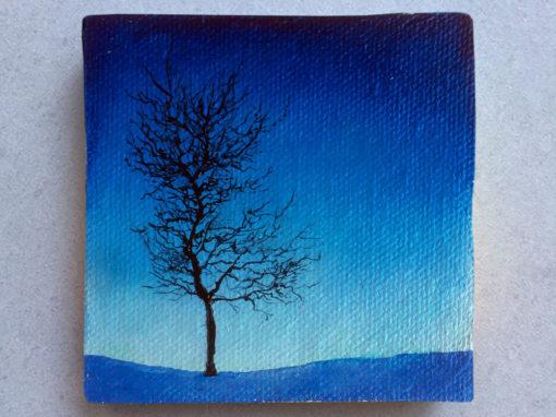 'Blue North' – Day 341/365 – R1900