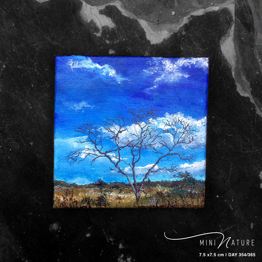 'Treeson Of Self' – Day 354/365